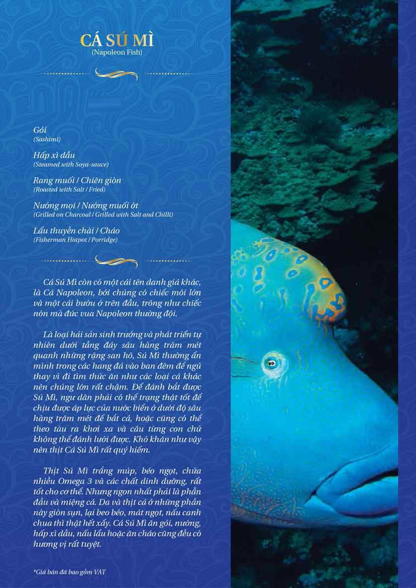 Menu Thế Giới Hải Sản – Pasteur 23
