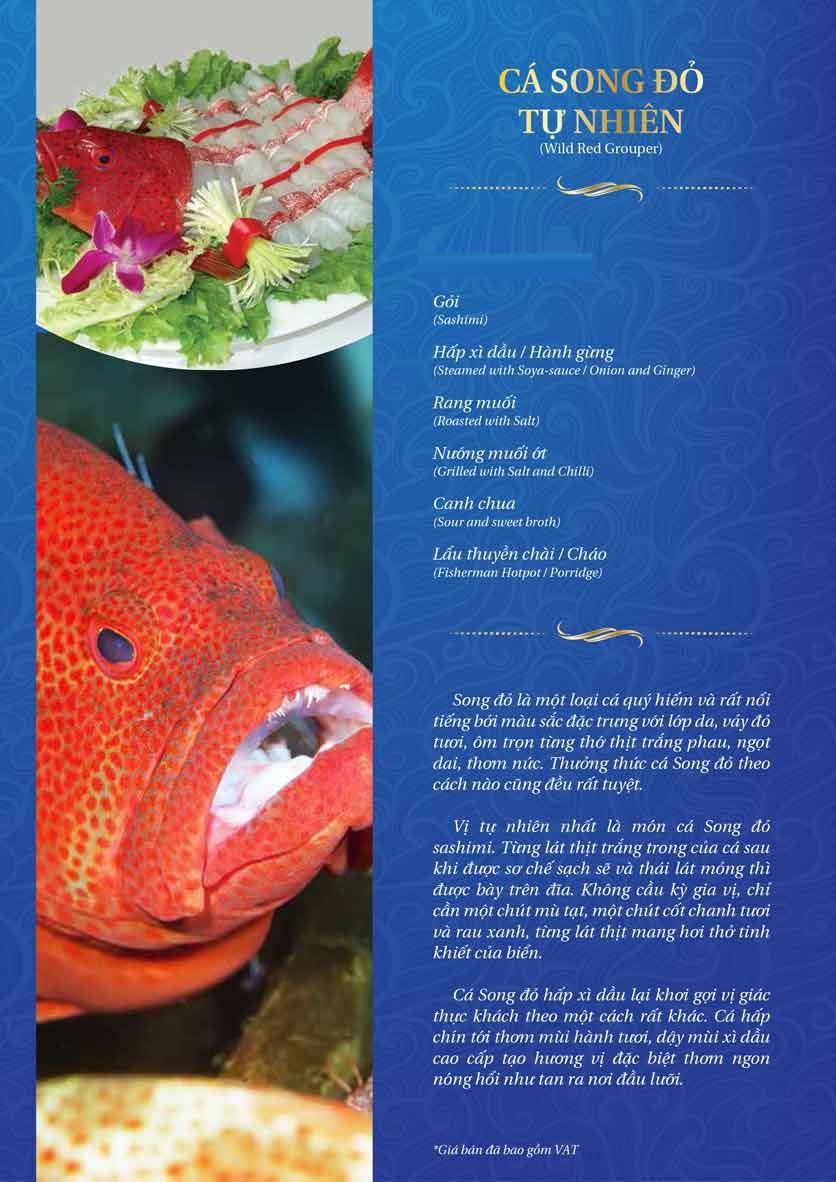 Menu Thế Giới Hải Sản - Thái Thịnh 24