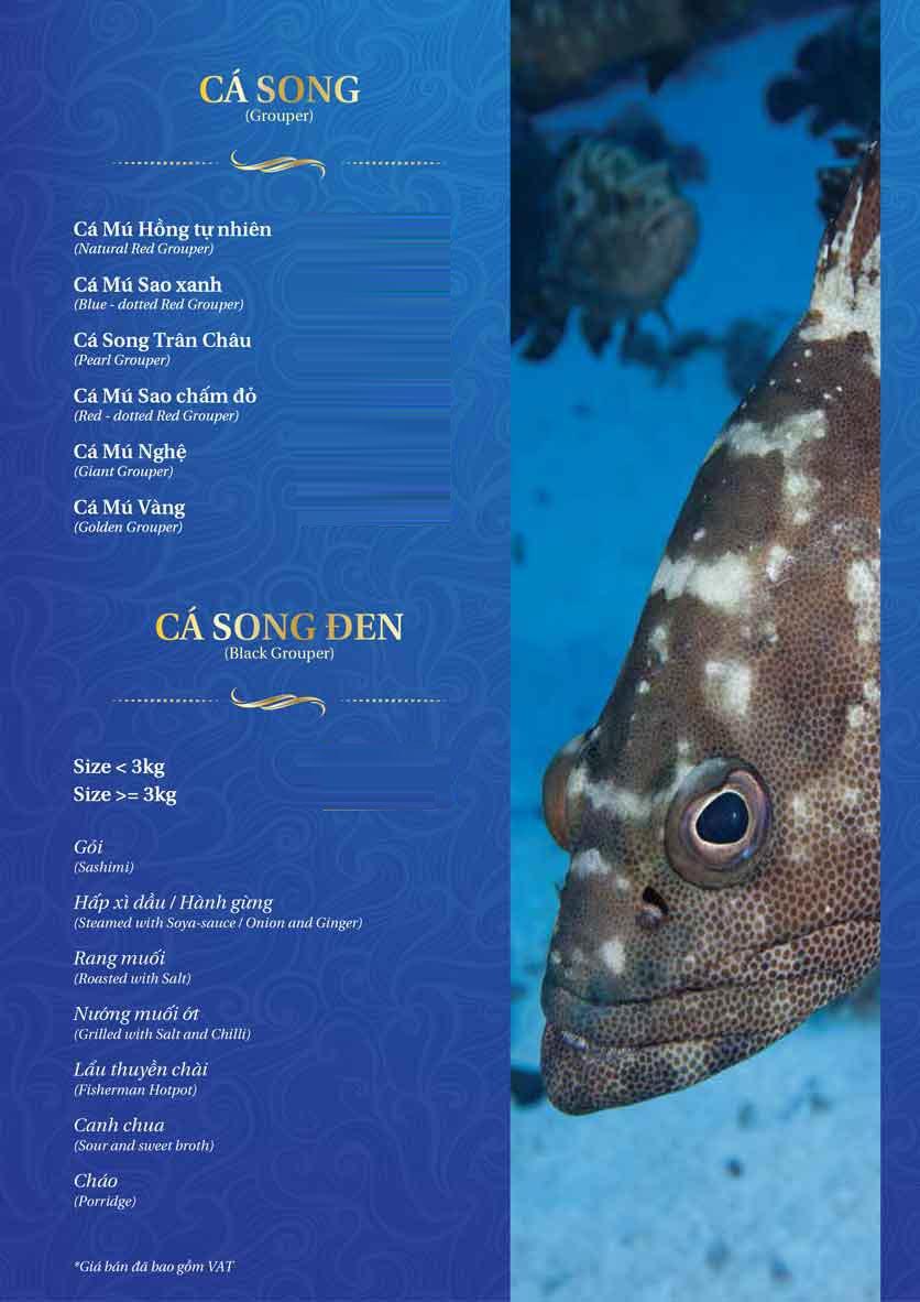 Menu Thế Giới Hải Sản – Pasteur 25