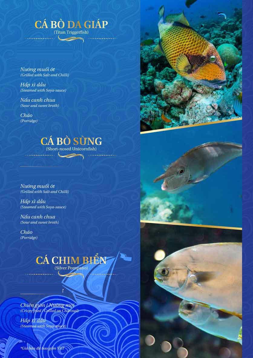 Menu Thế Giới Hải Sản - Thái Thịnh 29