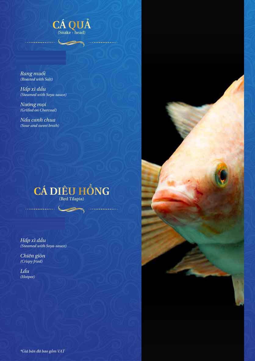 Menu Thế Giới Hải Sản - Thái Thịnh 31