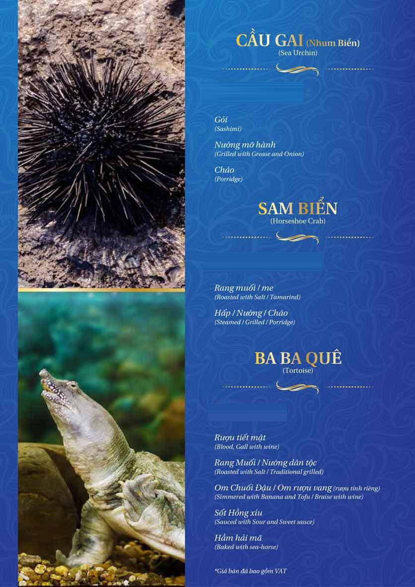 Menu Thế Giới Hải Sản - Thái Thịnh 32