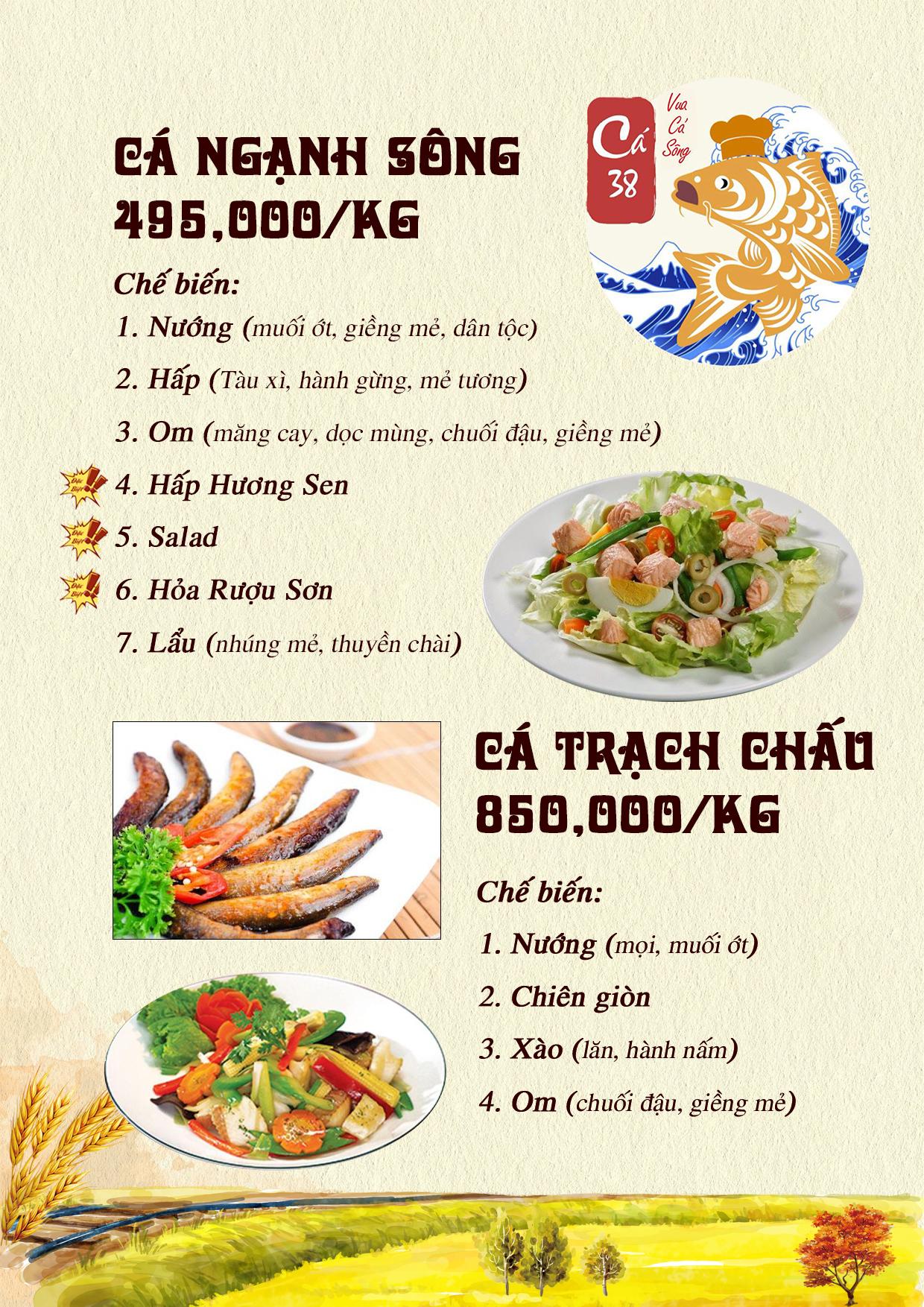 Menu Cá 38- Vua cá sông – 38 Trần Kim Xuyến  1