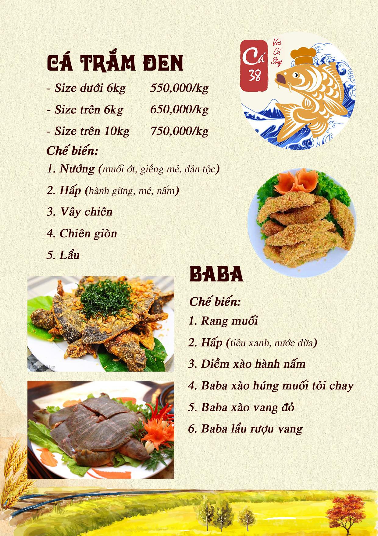 Menu Cá 38- Vua cá sông – 38 Trần Kim Xuyến  10