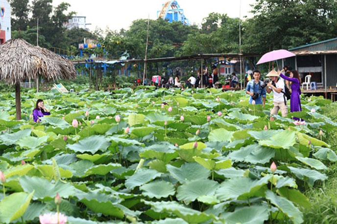 Top 10 địa chỉ ăn lẩu ngon rẻ, được yêu thích nhất ở Hà Nội 2