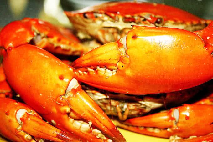 nhà hàng hải sản biển đông 794 đường láng 14