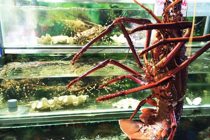 nhà hàng hải sản biển đông 794 đường láng 10