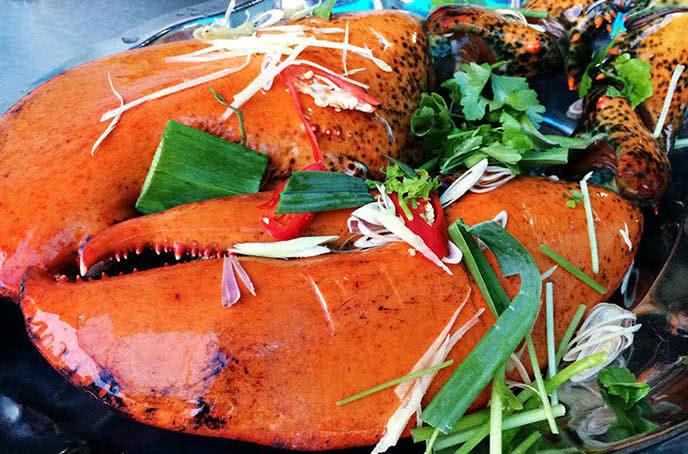 Tôm hùm Canada - hải sản biển đông trân thái tông