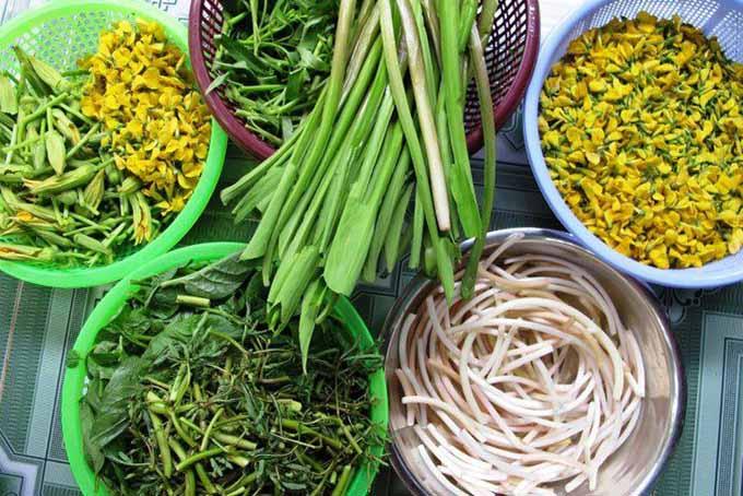 Những đặc trưng khác biệt của văn hóa ẩm thực Nam Bộ 2